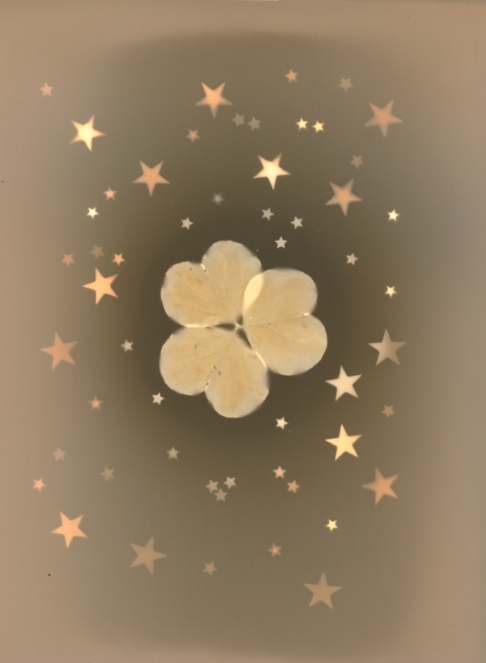 Thank Your Lucky Stars & Clover