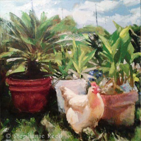 May (Chicken) - Blank Note Card