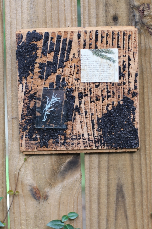 Rosemary Collage on Reclaimed Wood