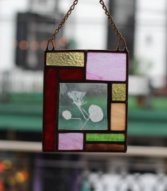 *Nasturtium Enverre / Stained Glass