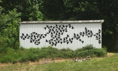 A Murder of Crows, Woodbury, TN