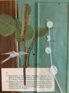Mixed Media Collage with Tern + Eucalyptus