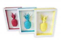 Pineapple 77-79 (Set of 3)