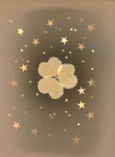 Thank Your Lucky Stars & Clover / Main Image