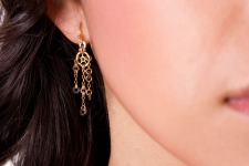 Luxe Earrings / Main Image