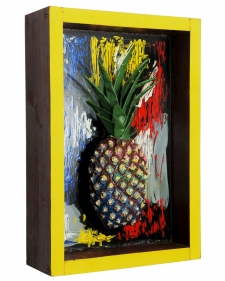 Pineapple 49 / Main Image