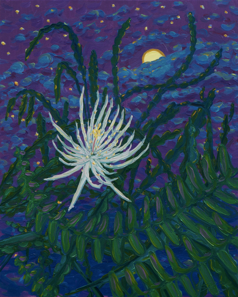 Night Blooming Cereus Study #2