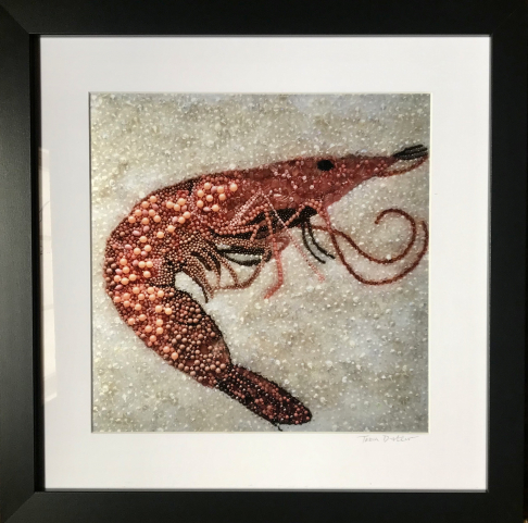 Pink Shrimp ~  Metallic Lustre Fine Art Print