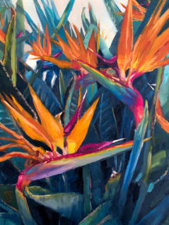 Birds of Paradise II