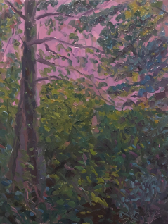 Woodlands Conservancy Study #3