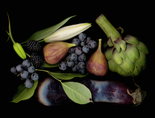 Fig & Friends / Main Image