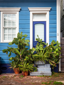 Bywater Blues / Main Image
