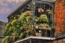 French Quarter Balcony / Main Image